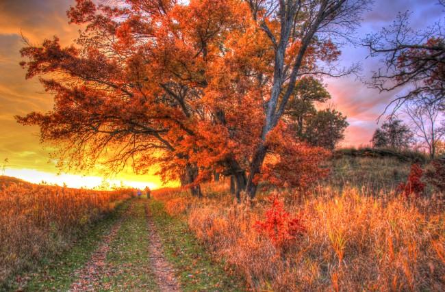 Red Walk